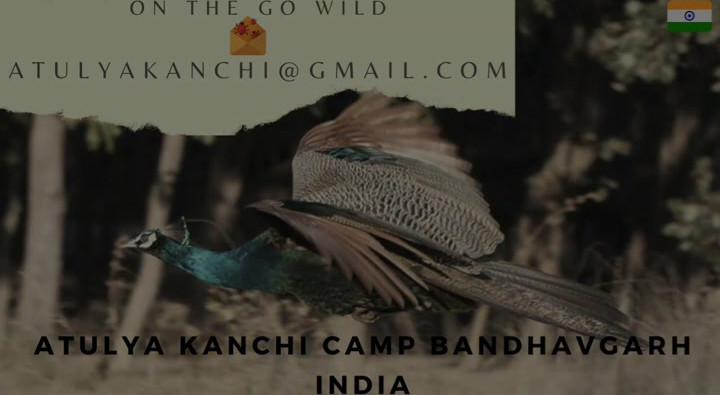 Atulya Kanchi Camp