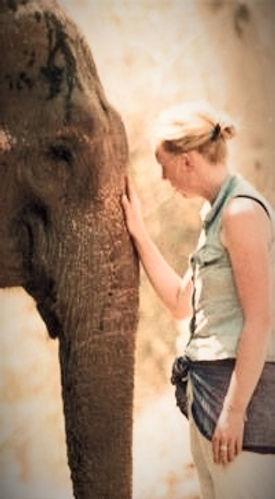 Kanchi the Elephant