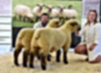 Winning pair of Ramlambs Shrewsbury 18 -