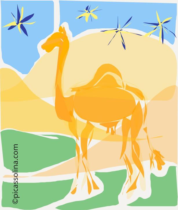 picassolina postcard illustration camel