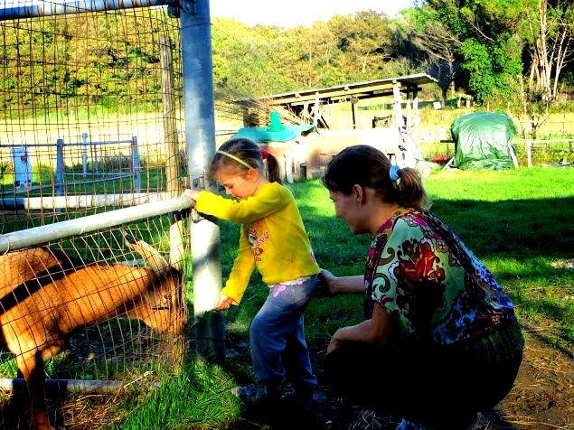 Natur-Kindergarten