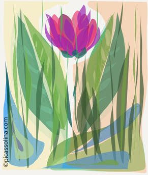 picassolina postcard illustration flowers