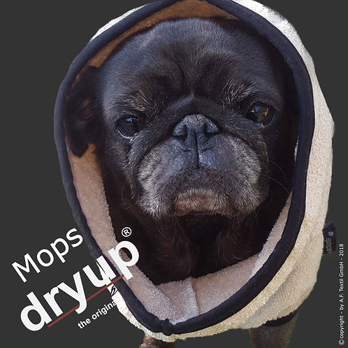 Dry up cape Mops & Co