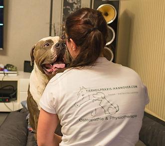 Physiotherapie Osteopathie Hund Pferd Katze
