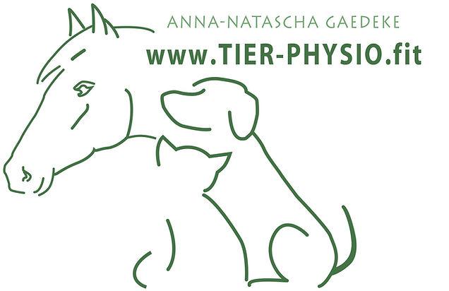 Physiotherapie Hund Pferd Katze
