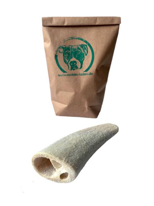 Büffel Horn Weiß