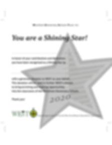 Shining Star Certificate 2020 med gray (