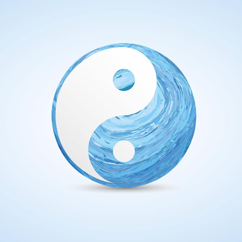 Yin & Yang Workshop