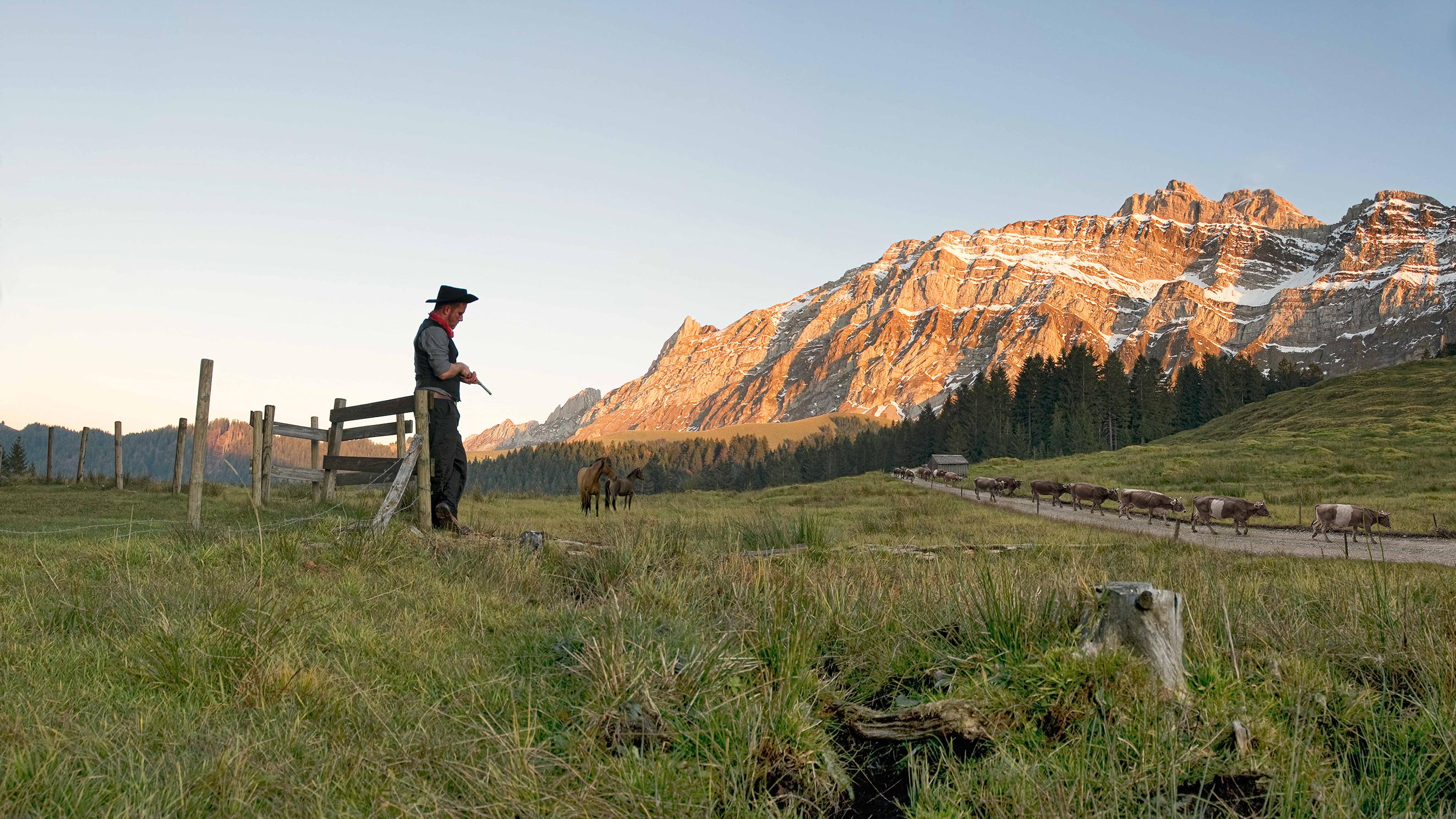 Cowboy1_cine 100x56_print_A