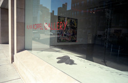 dog_in_gallery.jpg