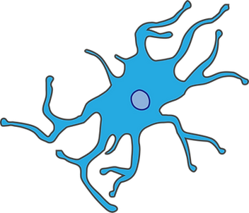 microglia.png