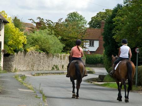 Horses on roads