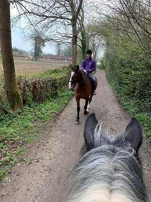 Hacking at Kingsmead Riding School Surrey