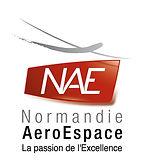 logo_NAE_HD(8)[1].jpg