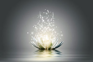 Copy of Lotus light.jpg