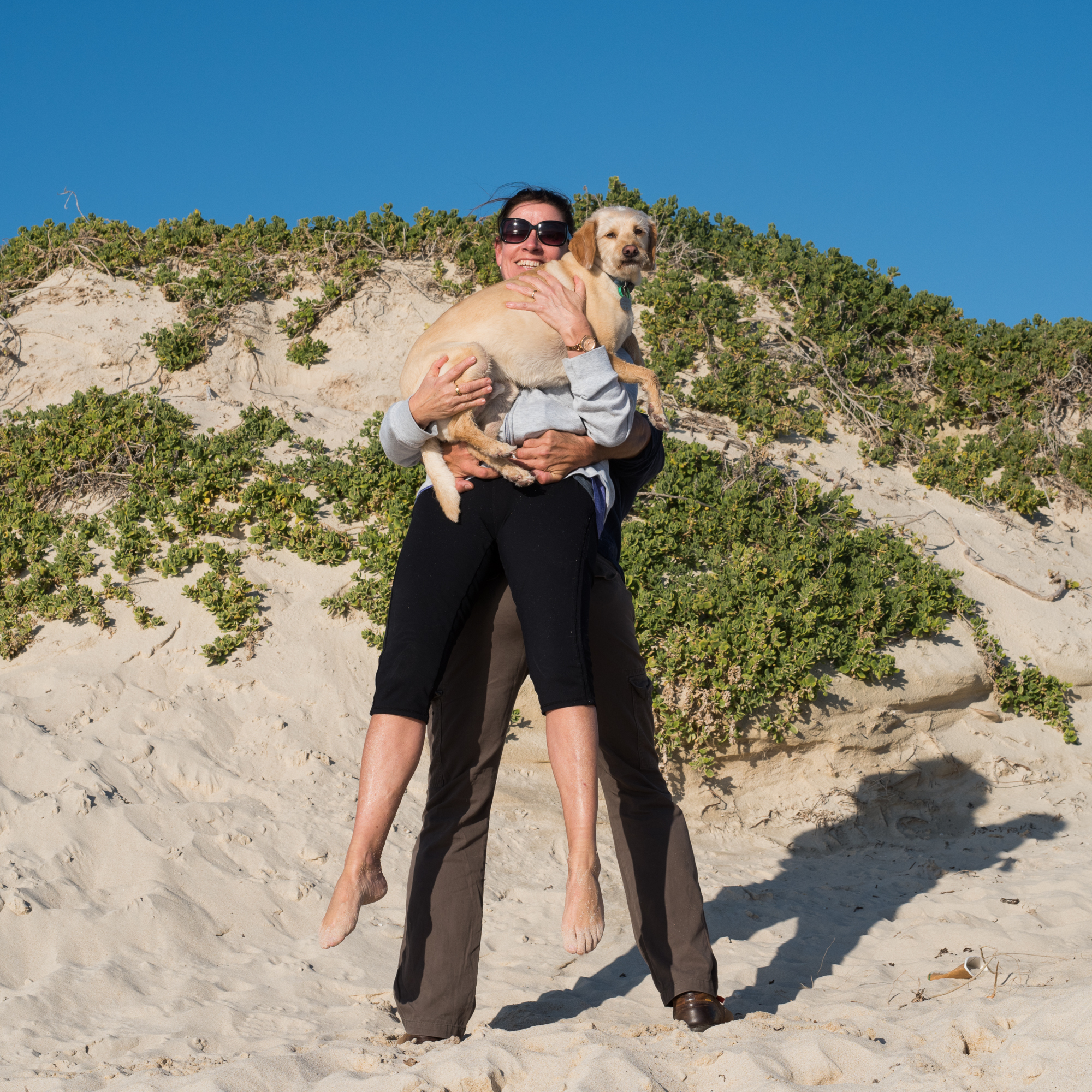 Dog Beach Perth - A dog's life