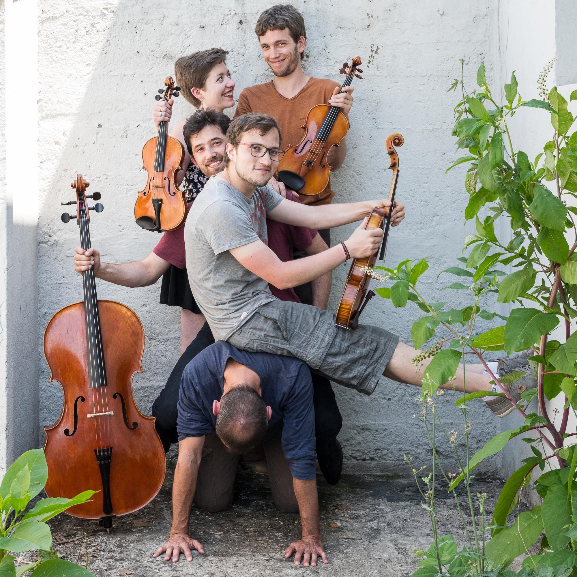 Musique - Le quatuor