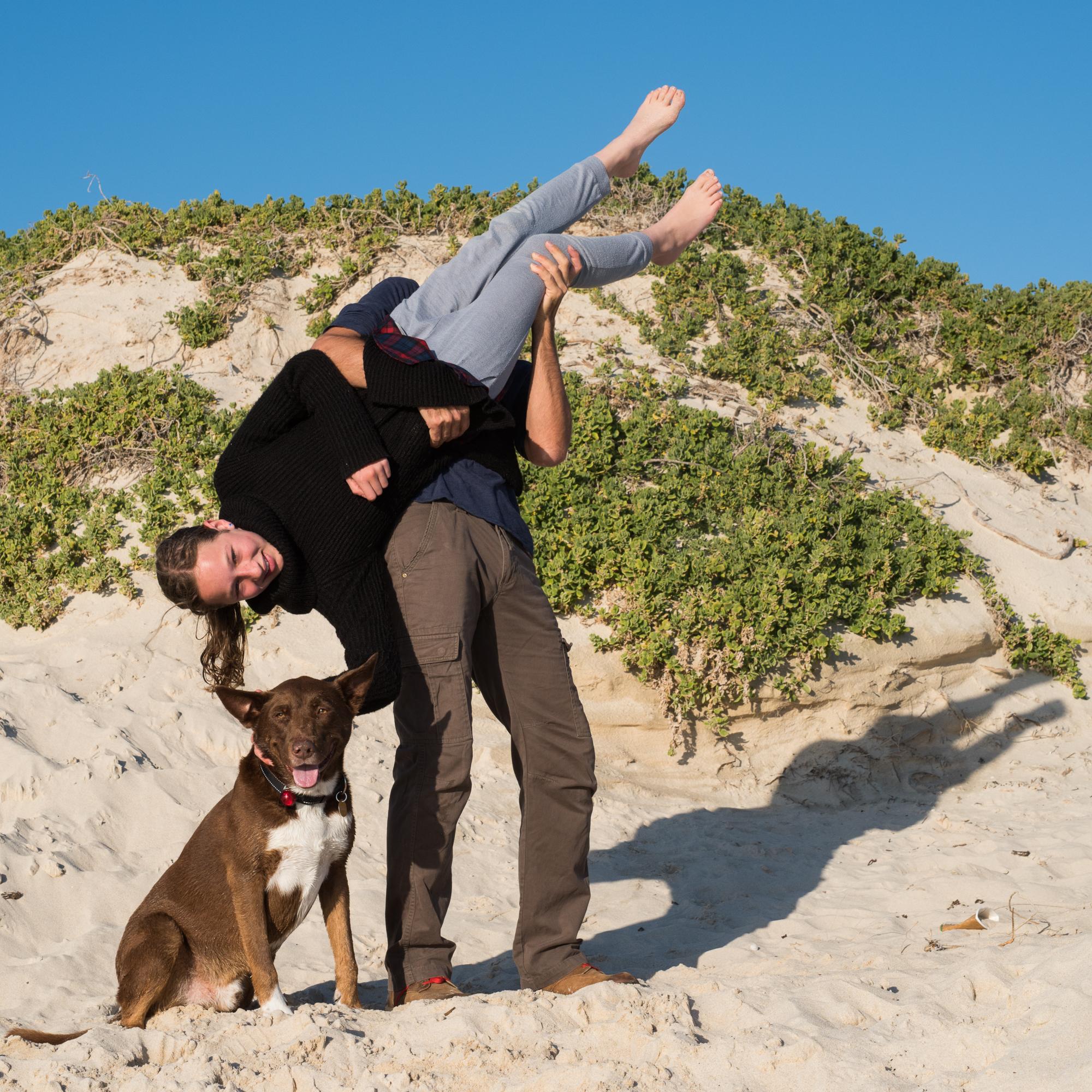 Dog Beach Perth - Dog-tired