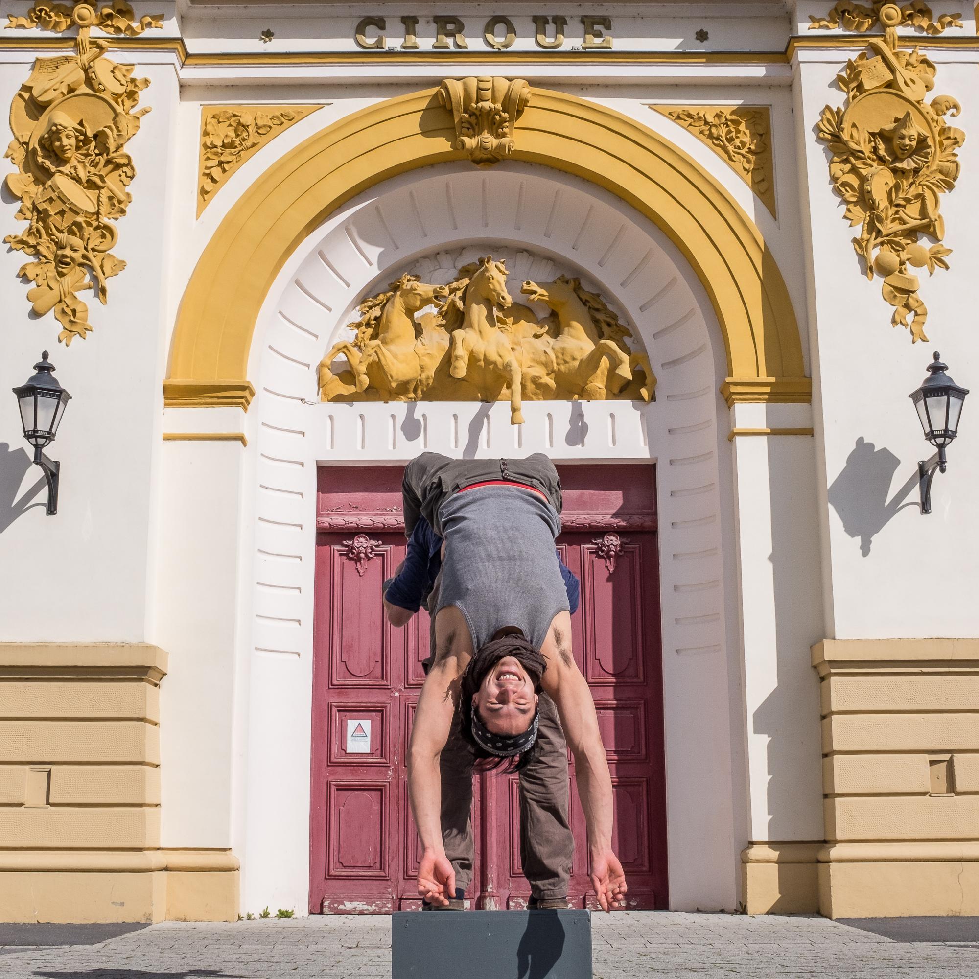Cirque - Ivan
