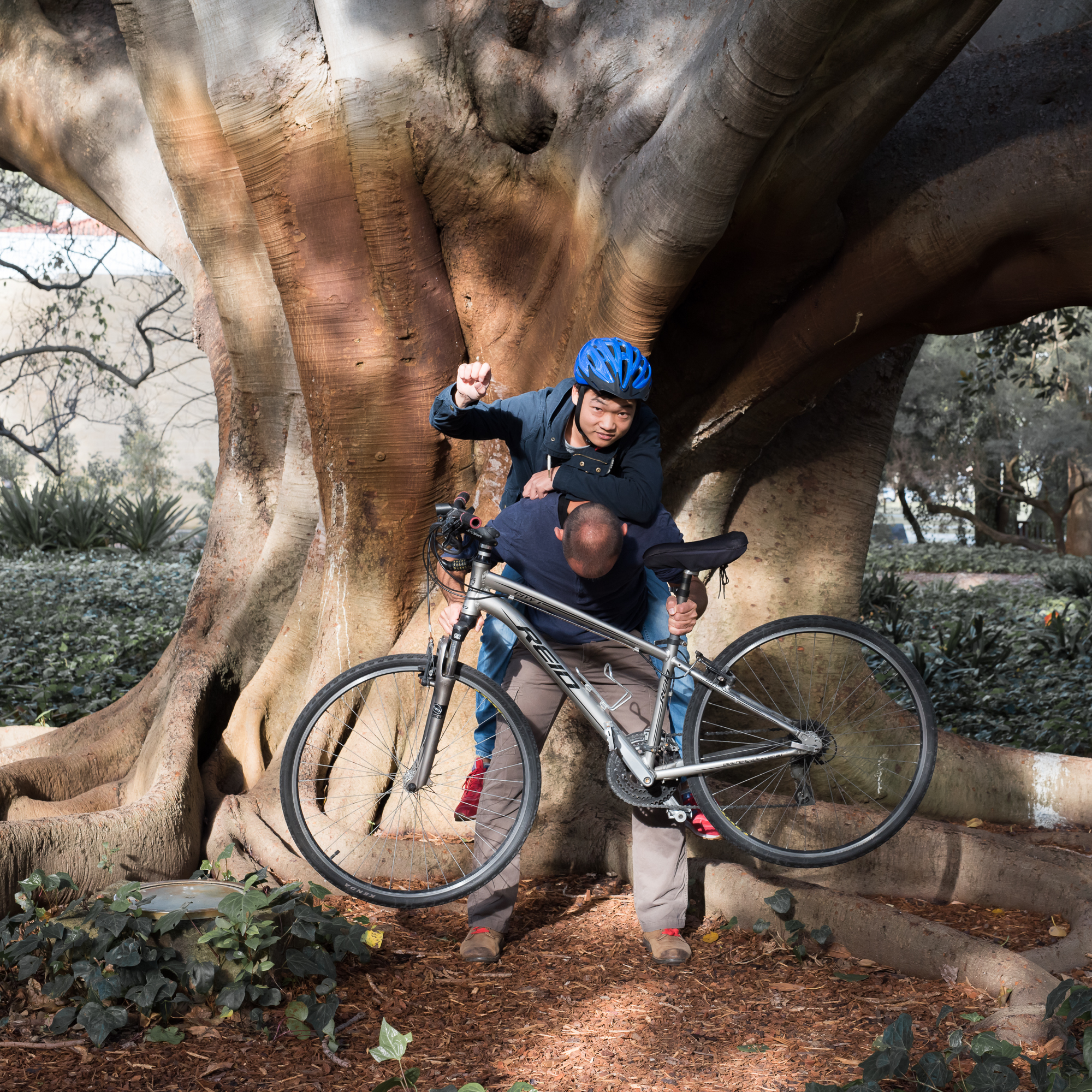 Perth University - Bicycle jousting