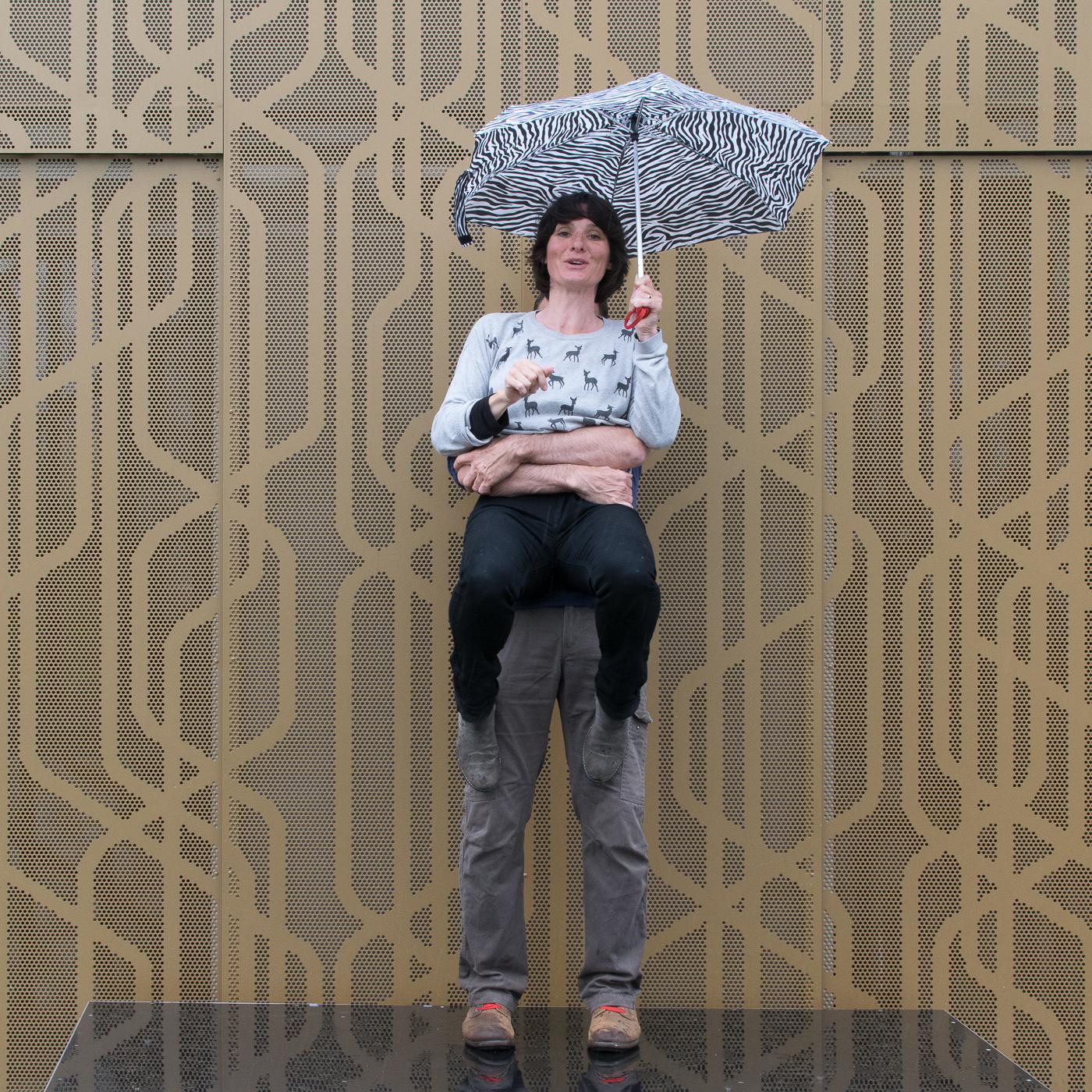 Parapluies_2016_-_Zèbre