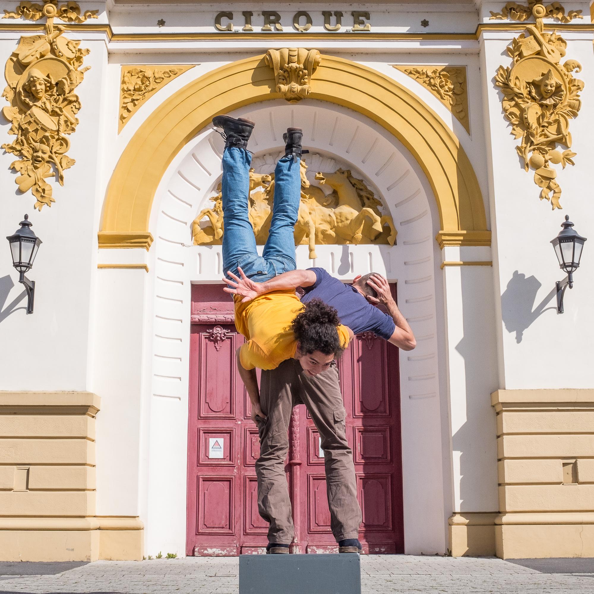 Cirque - Hector