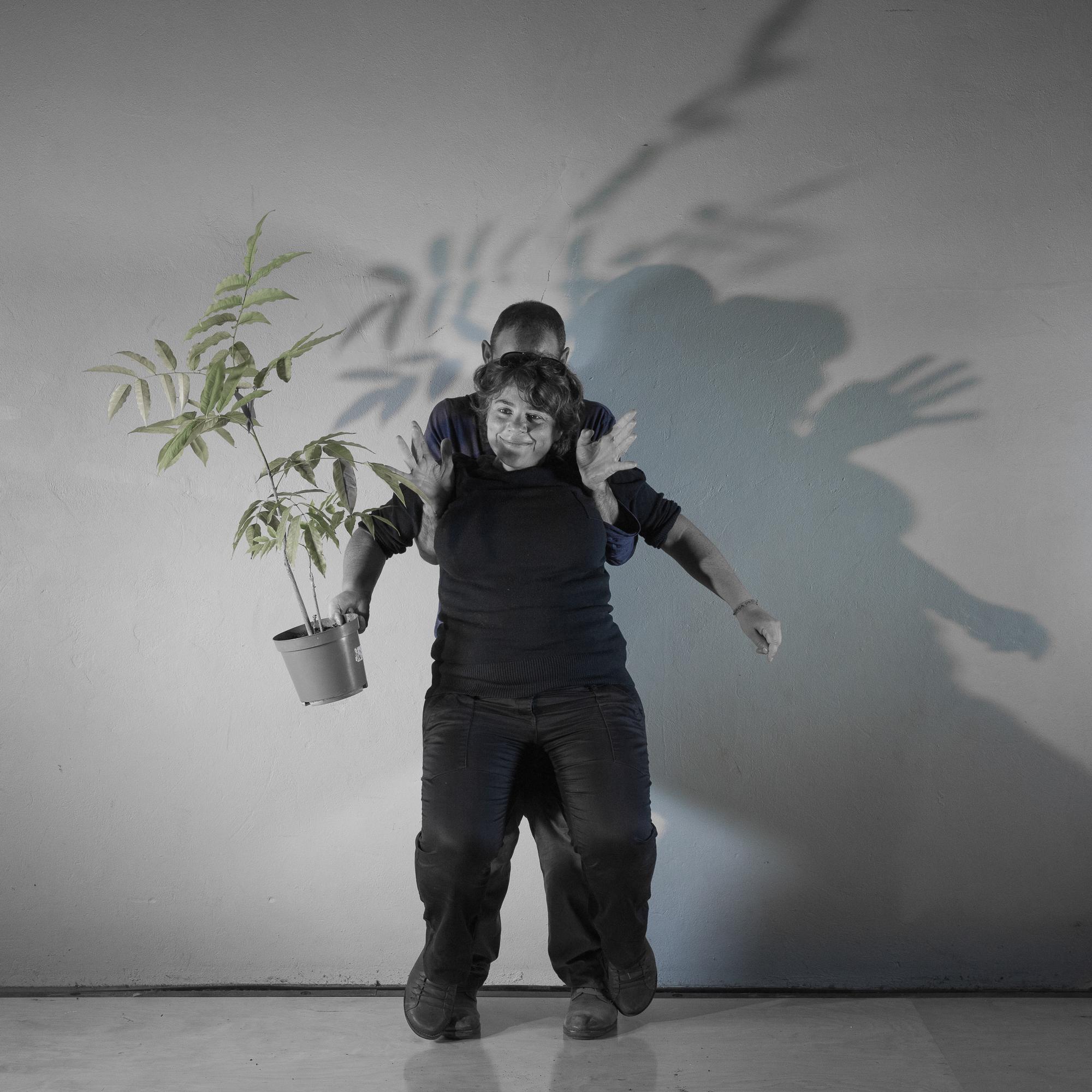 25 ans - Plante
