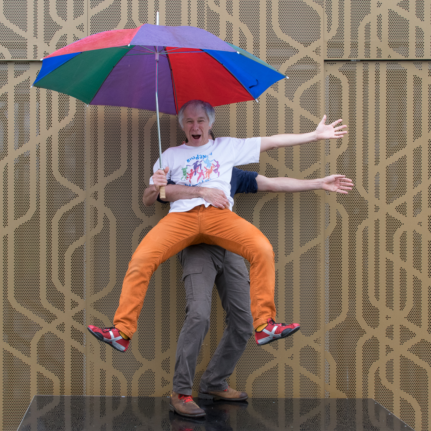 Parapluies_2016_-_Grenouille_météo