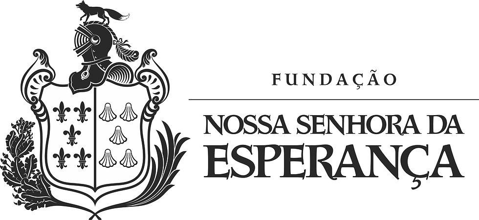 Logo FNSE.jpg