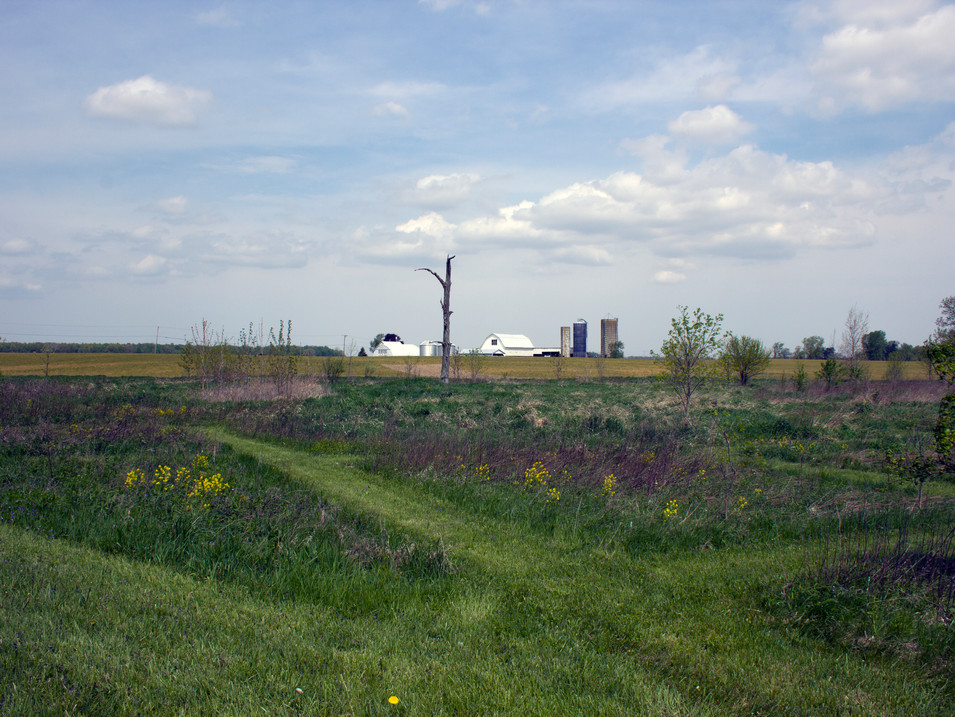 Farmland Properties