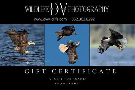 Gift Certificate_blank.jpg