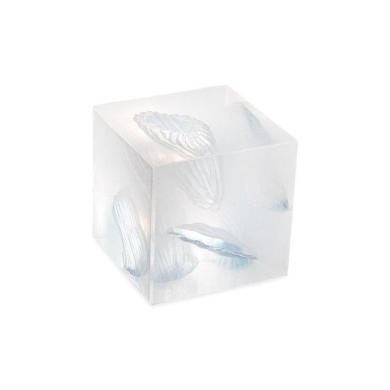 Wound Cube™ Gen2