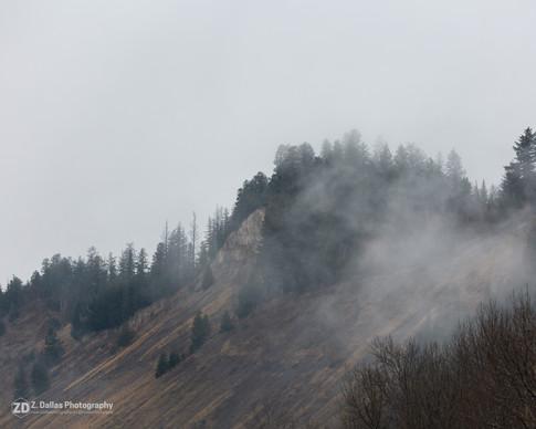 Cutbanks in fog
