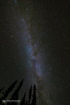Stars Overhead