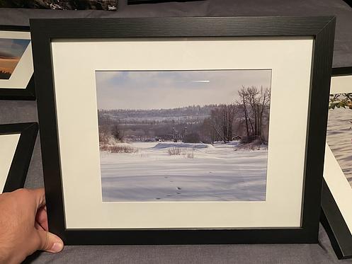 "Framed ""Cottonwood Island Park in Winter"""