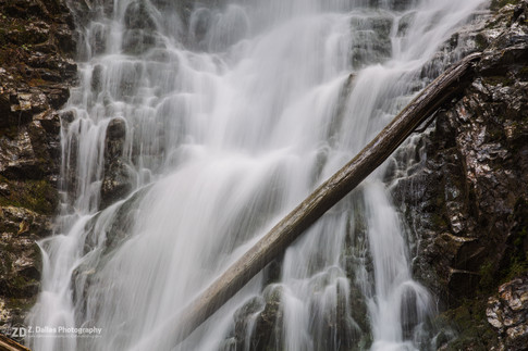 Ancient Forest Waterfall 2