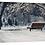 Thumbnail: A Place to Sit