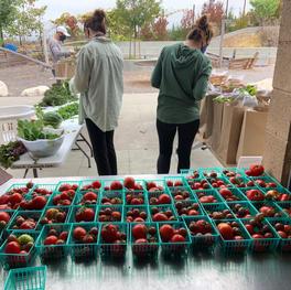7000 lbs Fruit