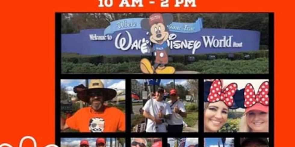 Disney Flag wave
