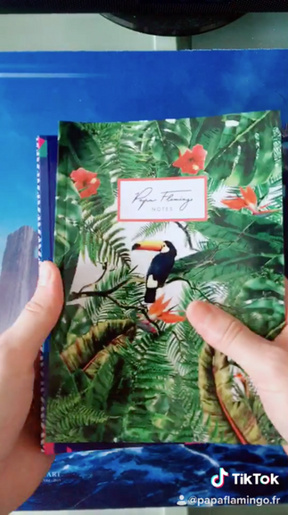 opening 1 carnets de notes Papa Flamingo