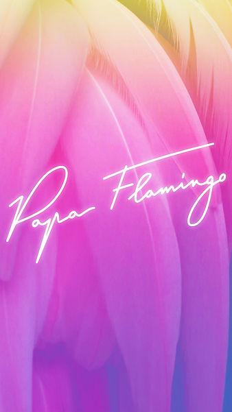 Wallpaper Papa Flamingo plume.jpg