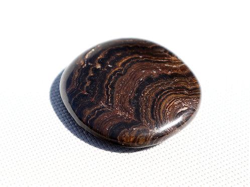 Palet Stromatolite