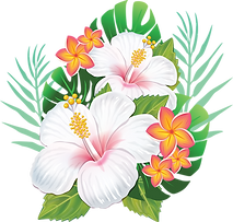 kisspng-rosemallows-hawaiian-hibiscus-flower-hawaiian-flower-5b329dd9277681.66254012153004