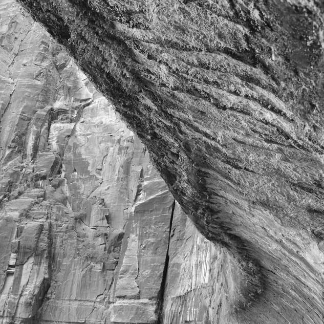 Cliff Detail, USA