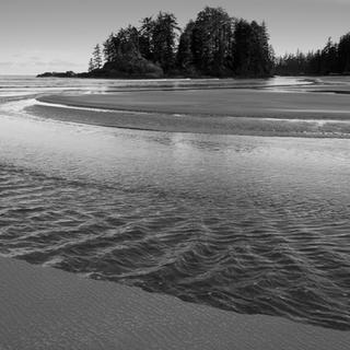 Tree Island, Canada