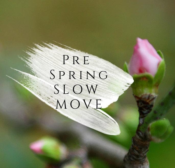 Pre Spring Slow Move🌷