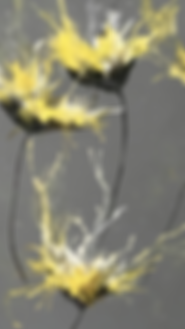 Mellow Yellow.png