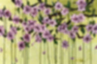 Springwatch_edited.jpg