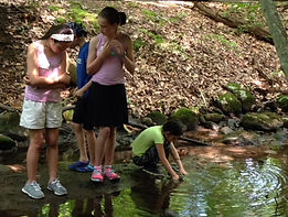 Children on nature hike at Angle Fly Brook