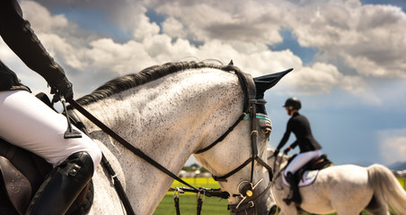 Hipico Horse Show -39.jpg